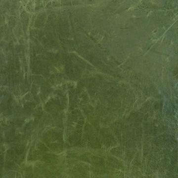 Cortina Green Apple