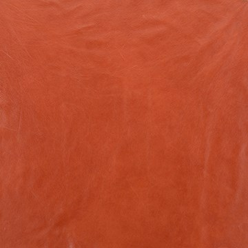 Stargo Orange